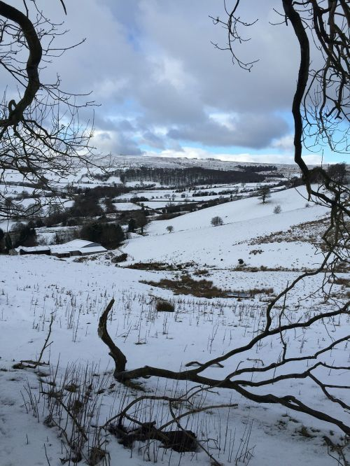snow hills nature