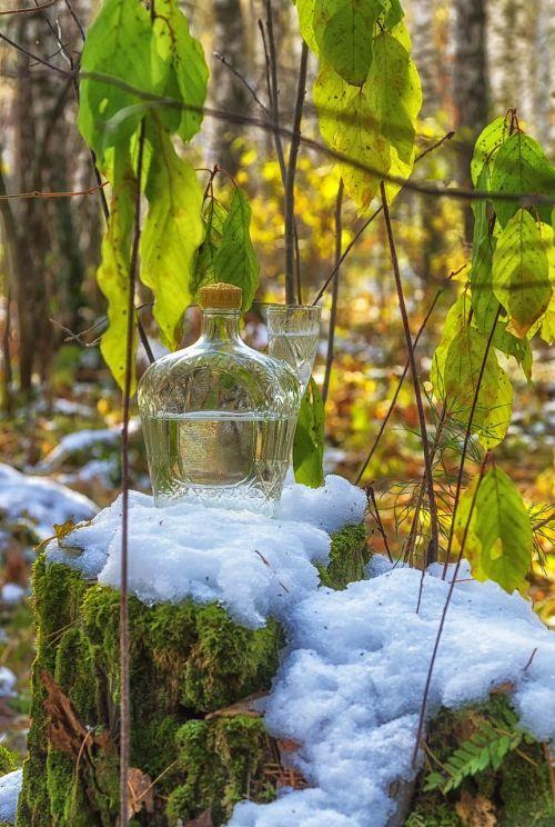 snow still life autumn