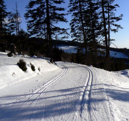 snow winter footprint