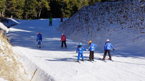 snow skiers ski