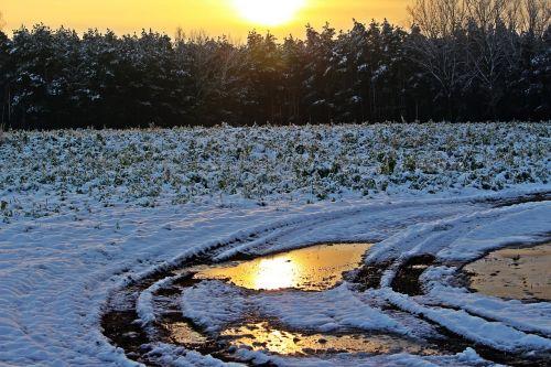 snow winter sunset