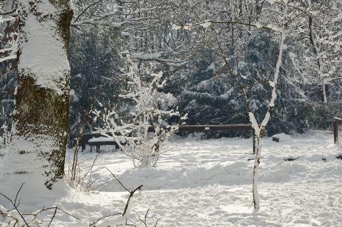 snow snowy landscape