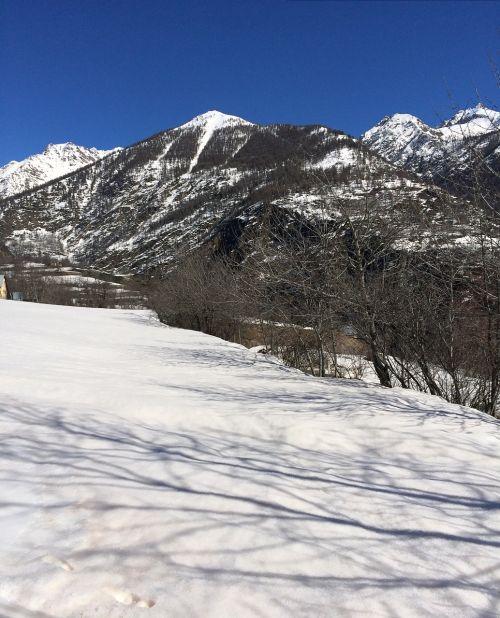 sniegas,gamta,geras žvilgsnis,šventė
