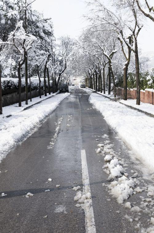 snow nevada winter