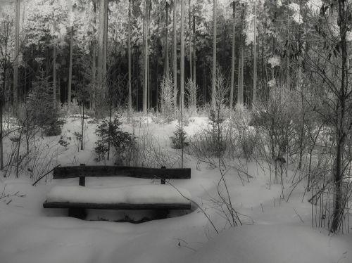 snow winter bank