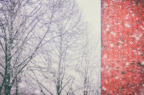 snow blizzard cold