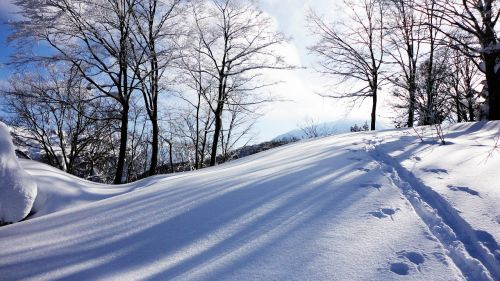 snow sunbeams footprints