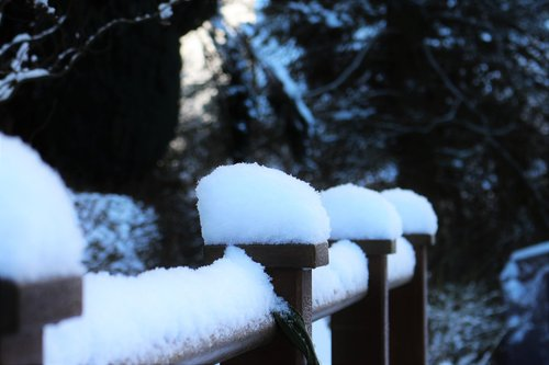 snow  snow cover  snow on railing