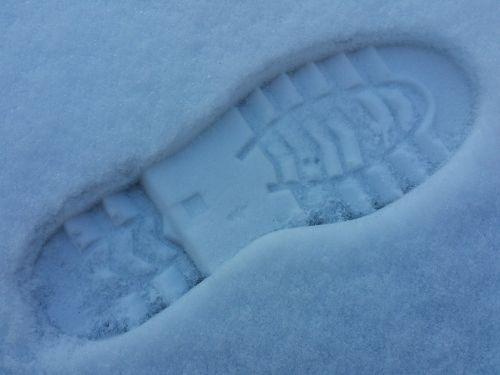 snow reprint winter