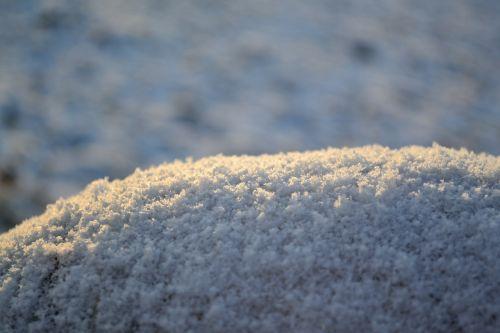 snow macro winter