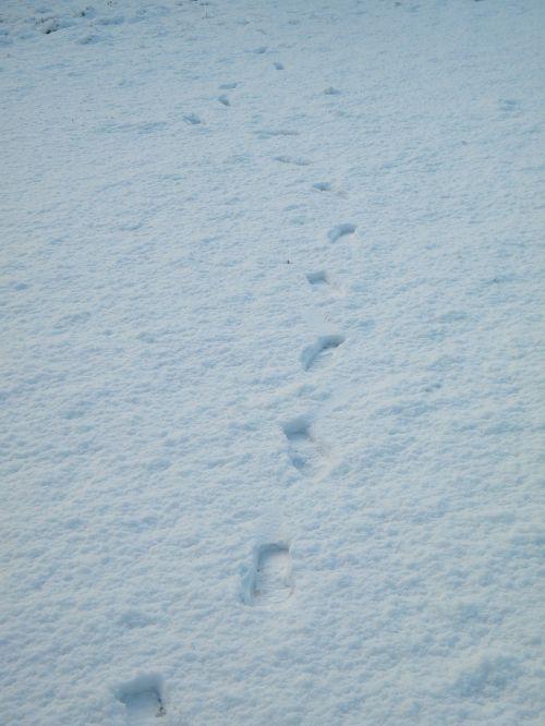 snow footprints path