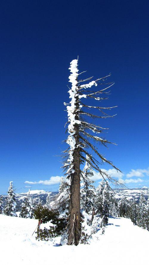 snow sierra mountains