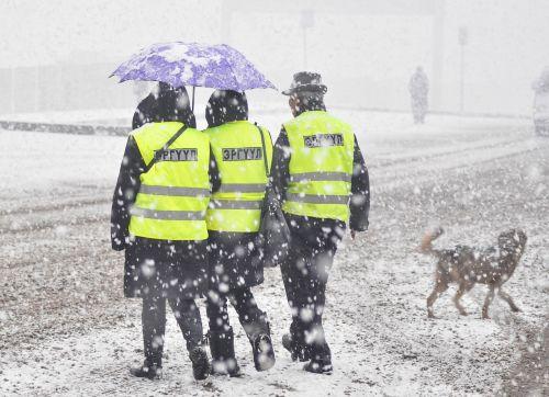 sniegas, patrulis, skėtis, šuo, šaltas, stiprus sniegas, lauke, gatvė, Mongolija, oras