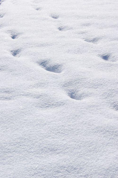 snow traces white