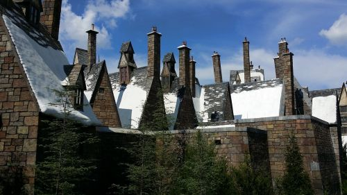 snow theme park roofs