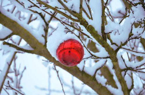 snow sphere christmas