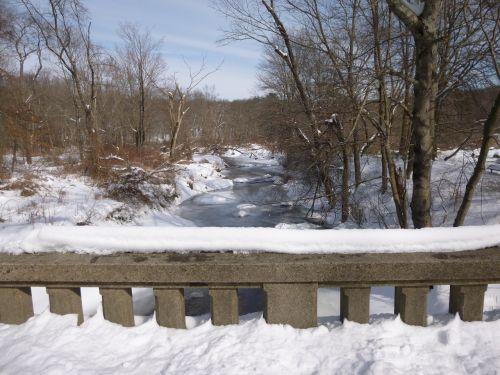 sniegas,ledas,vanduo,žiemos fone,sniego fonas,žiemos peizažas,žiemos medžiai,medis,šaltas oras,gamtos kraštovaizdis,lauke