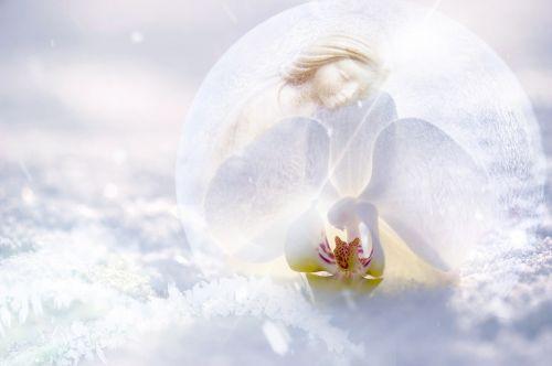 sniego rutulys,sniegas,žiema,atmosfera,komponavimas,rutulys,stiklo rutulys,balta,mėlynas,šaltas,sniego kristalai