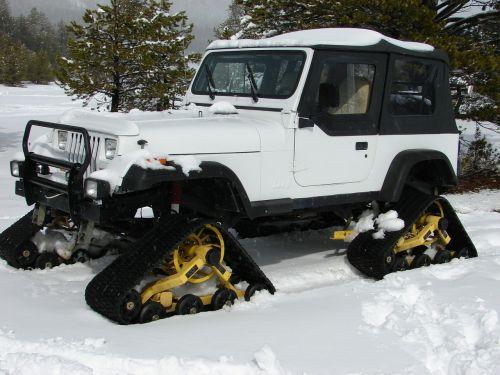 snow cat snowtracks snow