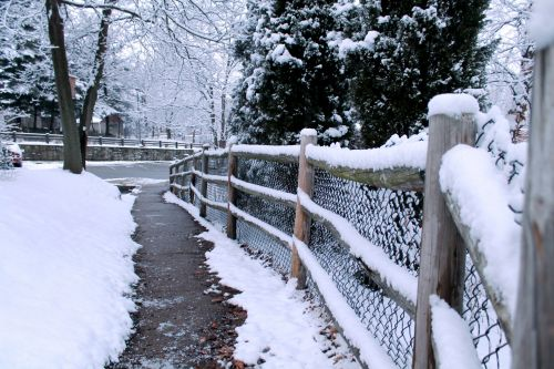 Snow Covered Fence - 01