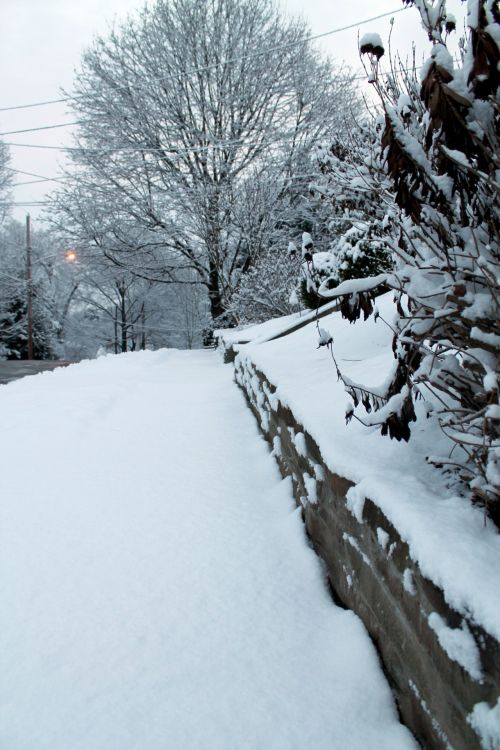 Snow Covered Wall - 02