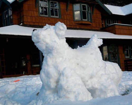 snow dog mt tom art snow