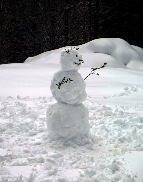 sniego žmogus, sniegas, balta, įžūlus, žiema, veidas, žiemą, šaltas, juokinga, žiemos piktograma, figūra