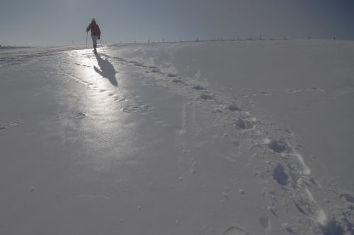 snow shoe hike winter traces