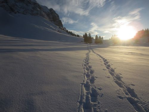 snow tracks wintry trace
