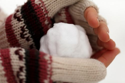 Snowball In Hand