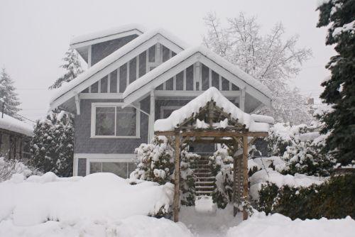 sniegas, sniegas, antklodės & nbsp, sniegas, sniegas, žiema, užšaldymas, sniegas, šventė, Kalėdos, medis & nbsp, filialai, sniego žiemos poilsio namai
