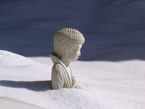 snowdrift icon statute