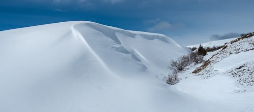 snowdrift  new zealand  snow