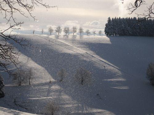 snowfall winter mood sleigh ride