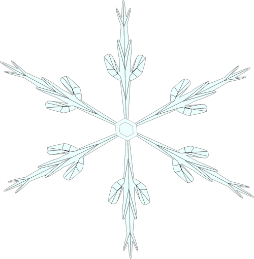 snowflake ice crystal snow