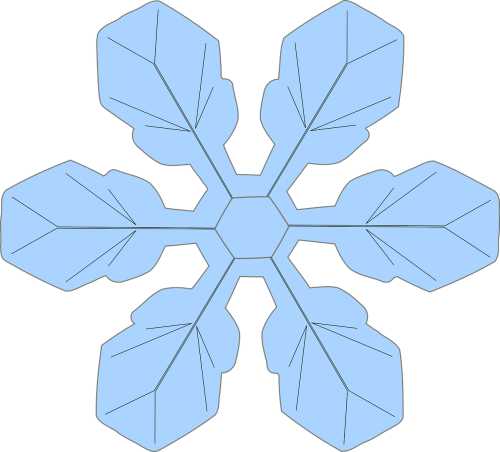 snowflake winter ice crystal