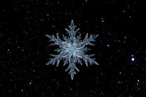 snowflake  ice crystal  ice