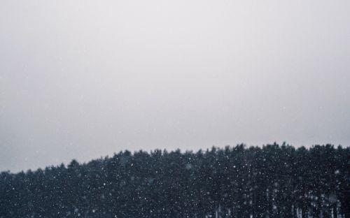 snowing blizzard winter