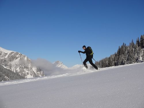 snowshoe snow snowshoeing