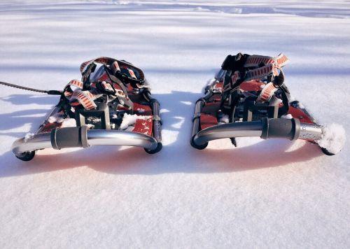 snowshoe sport winter
