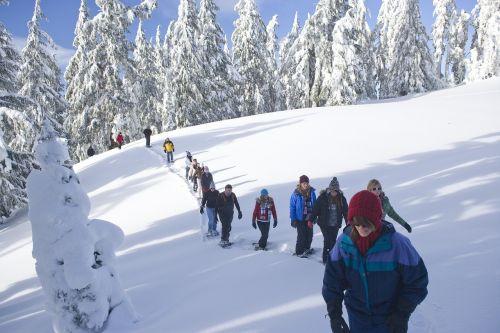 snowshoe walk tourists snow