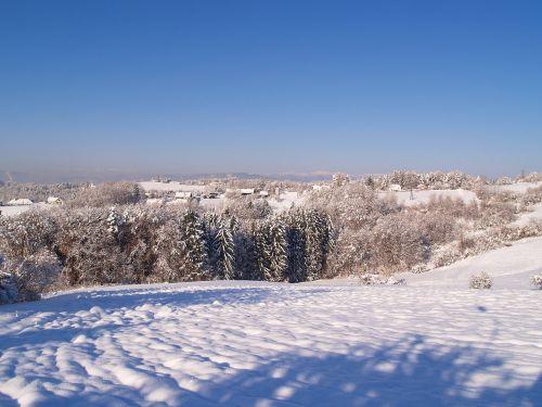 snowy snow winter