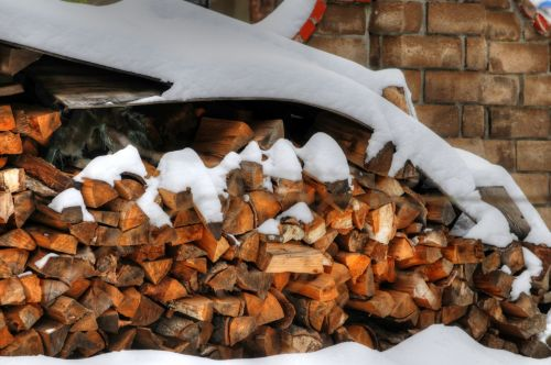 Snowy Firewood