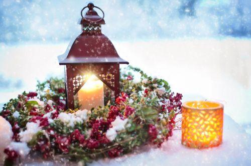 snowy still-life winter christmas