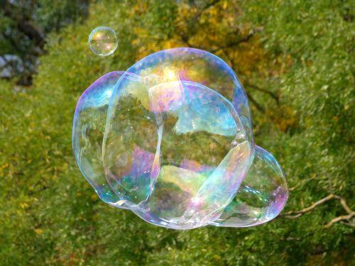 soap bubble blubber large