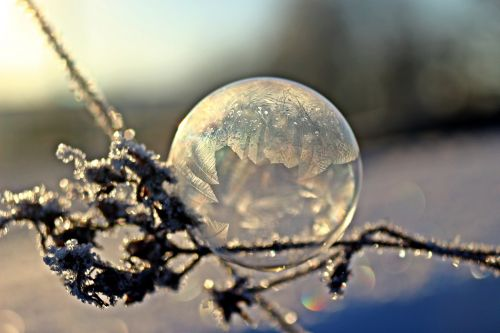 soap bubble frost globe frost blister