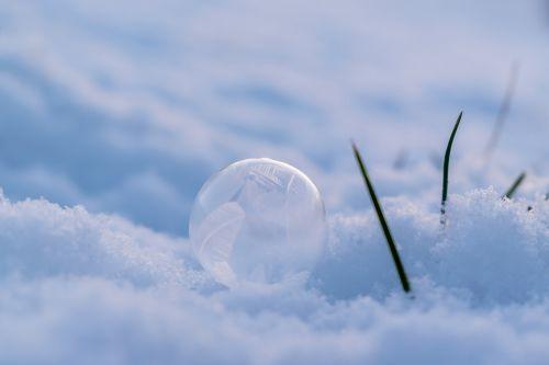 soap bubble frost winter