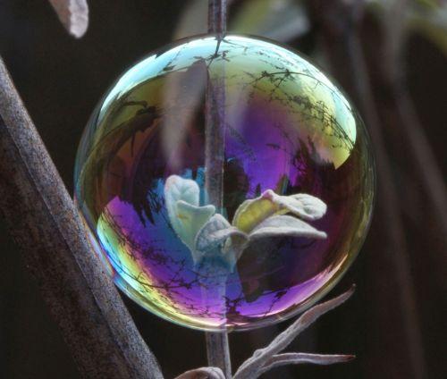 soap bubble light reflection