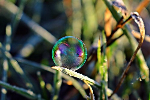 soap bubble  frost bubble  ice bubble
