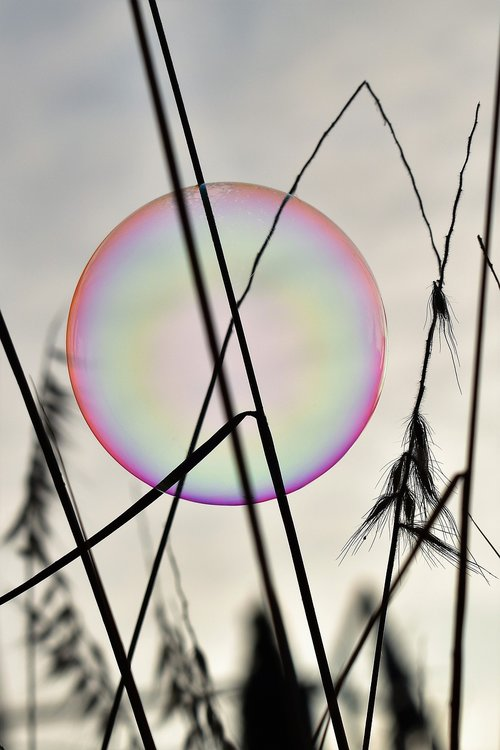 soap bubble  backlighting  mood